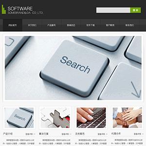 软件公司网站 金康云企业建站系统